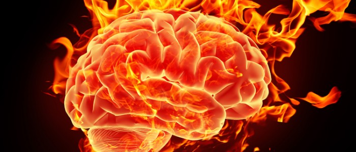 Kimyasal Madde Fitalat, IQ'yu Etkiliyor