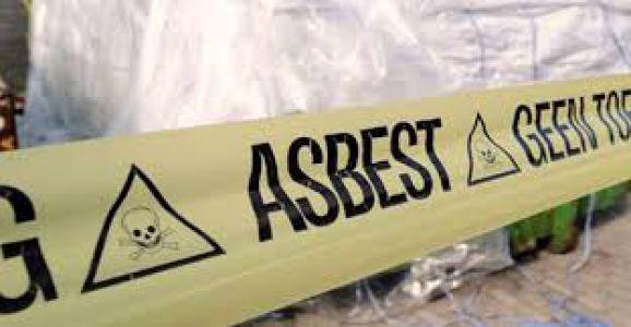 roermandda-asbest-panigi