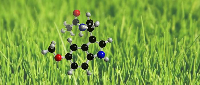 organik-molekullerin-bitkilerdeki-kullanim-alanlari