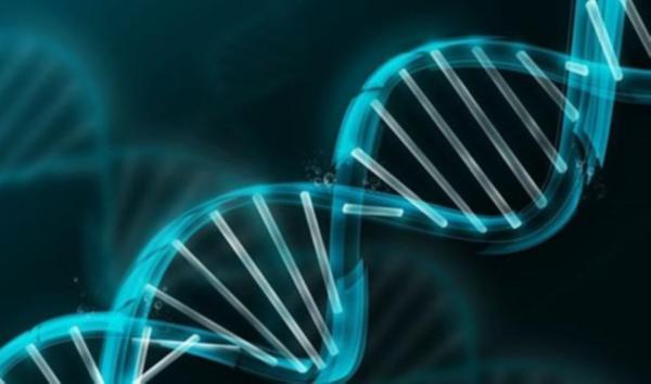bozuk-genleri-tedavi-edecek-ilac-geliyor