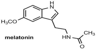 karanligin-hormonu-melatonin-1