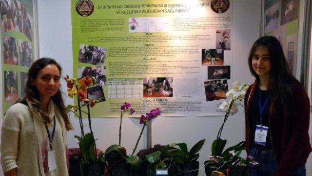 lise ogrencileri bitki yapraklarindan enerji elde etti - Lise Öğrencileri Bitki Yapraklarından Enerji Elde Etti