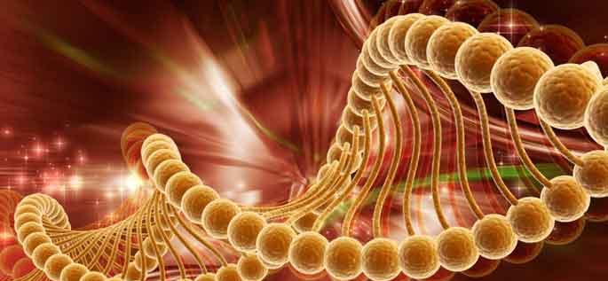 13-kansere-karsi-tek-ilac