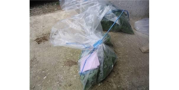 taze-meyve-ve-sebzelerde-hasat-oncesi-zirai-ilac-denetimi