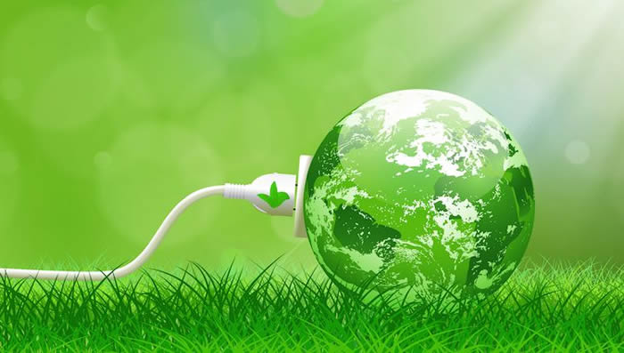 bitkilerden elektrik uretildi - Bitkilerden elektrik üretildi