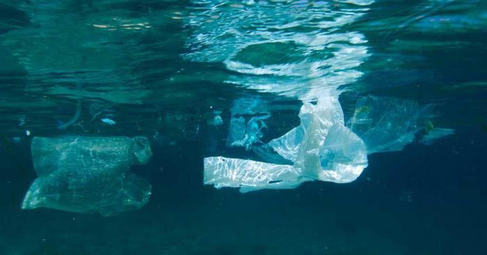plastik-copler-kuzey-kutbu-nda