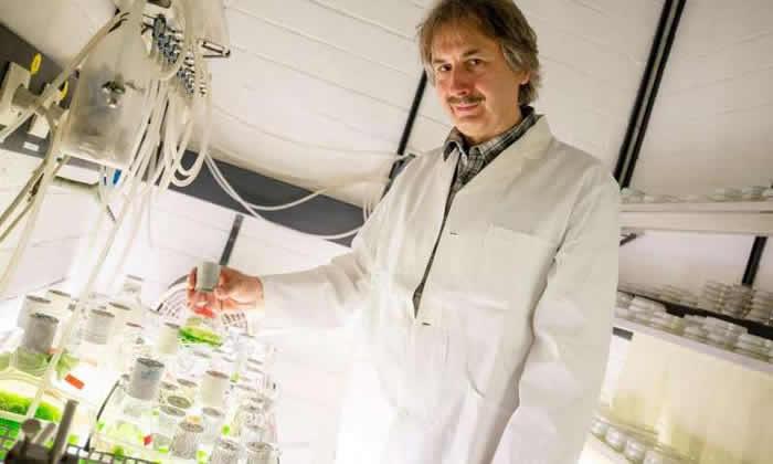 yapay enzimle laboratuvar ortaminda hidrojen uretildi 1 - Yapay Enzimle Laboratuvar Ortamında Hidrojen Üretildi