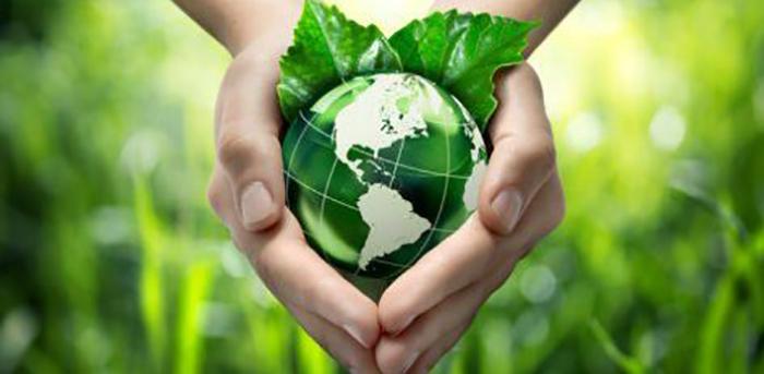 yapay-yaprak-bilim-insanlari-karbondioksiti-yakita-cevirdi