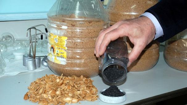 Kayısı Çekirdeğinden Karbon Üretildi