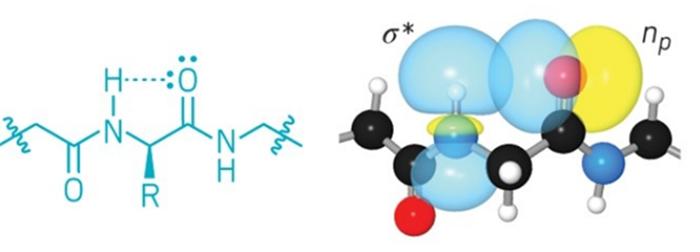 olagandisi-hidrojen-baglari-proteinlerde-kimyacilarin-dusundugunden-daha-buyuk-bir-rol-oynuyor