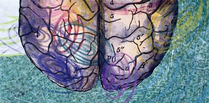 ses-otesi-dalgalarla-asilama-yontemi-beyin-damarlarindaki-bariyerleri-asmayi-basardi