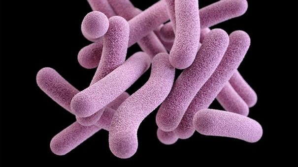 basit-bir-test-tuberkulozu-kolaylikla-tespit-edebiliyor