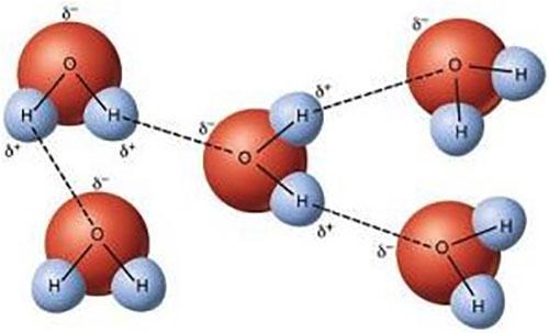 sivi-suyun-ikinci-bir-fazi-oldugu-kesfedildi-1