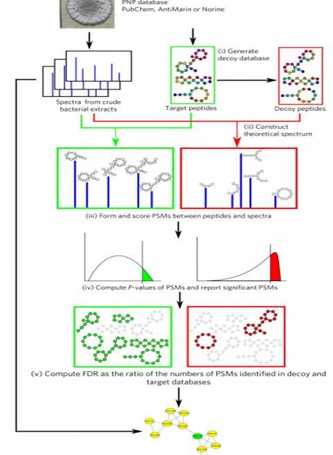 yeni yontem kutle spektrometresi veri setlerinde antibiyotikleri belirlemeye yardimci oluyor - Yeni Yöntem, Kütle Spektrometresi Veri Setlerinde Antibiyotikleri Belirlemeye Yardımcı Oluyor
