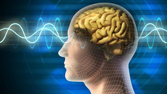 beyin icin uzmanlari heyecanlandiran mucize ilac - Beyin için uzmanları heyecanlandıran 'mucize ilaç'