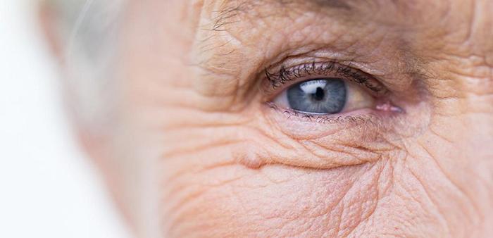 bilim insanlari yasli ve hasarli hucreleri yok etmenin yolunu kesfetti - Bilim İnsanları Yaşlı ve Hasarlı Hücreleri Yok Etmenin Yolunu Keşfetti!