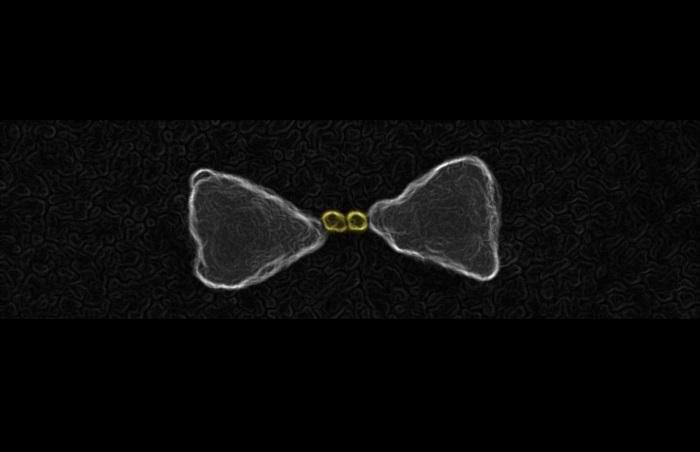 gunes isigini daha kolay toplayan nanomalzemenin sirri - Güneş Işığını Daha Kolay Toplayan Nanomalzemenin Sırrı