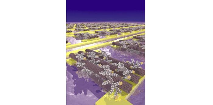karbon nanotupler kucuk transistorlere kendiliginden monte ediliyor - Karbon Nanotüpler Küçük Transistörlere Kendiliğinden Monte Ediliyor