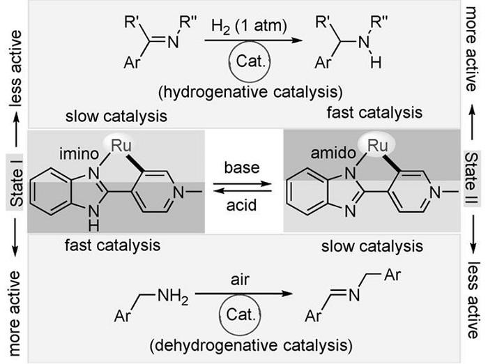 rutenyum kompleksi tamamlayici reaksiyonlari katalizliyor 1 - Rutenyum Kompleksi Tamamlayıcı Reaksiyonları Katalizliyor