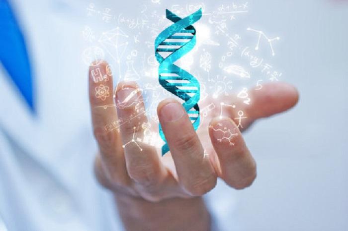 tasarimci proteinler ve dna sarmali - Tasarımcı Proteinler Ve Dna Sarmalı