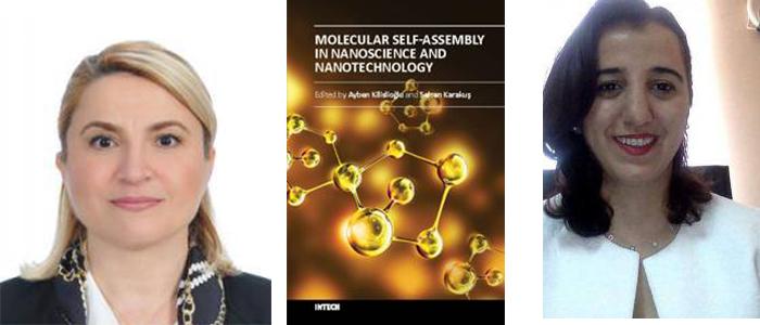 İstanbul Üniversitesi Hocalarından Nanobilim ve Nanoteknoloji Alanında Ücretsiz Kaynak