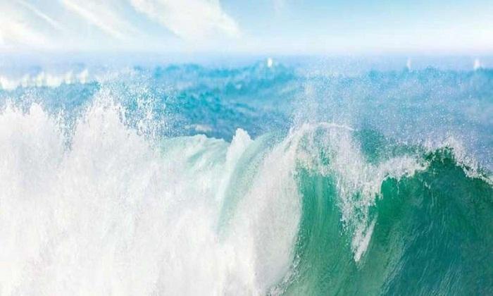 Plankton ve Bakteriler Okyanus Püskürmelerini Nasıl Şekillendirir?