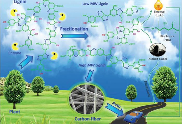 Yeni Organik Geri Dönüşüm Teknolojisi, Az Plastik Çok İstihdam Demek Olabilir