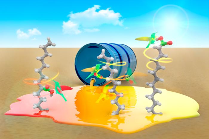 Yürüyen Katalizör Karbon Dioksiti Gösteriyor