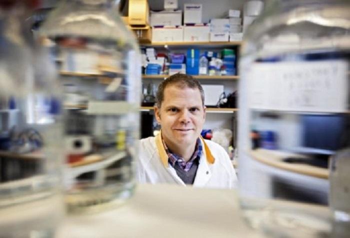 Bağırsak Mikrobiyotiğinin Diyabetle Savaşı