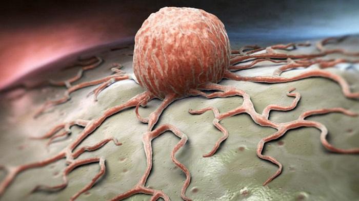 Her Yıl Kanser İlaçları için 113 Milyar Dolar Harcanıyor