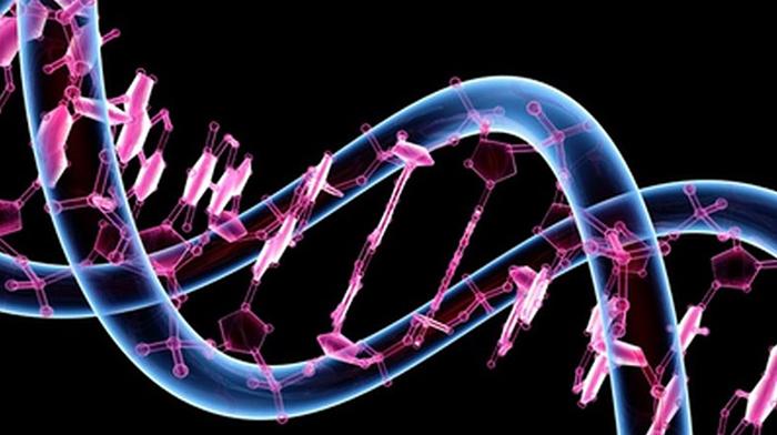 kanserde mutasyona gore ilac verilecek 1 - Kanserde Mutasyona Göre İlaç Verilecek