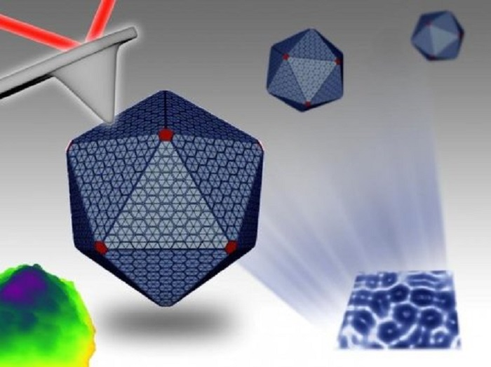 Nanoteknoloji Bakteriyel Mekanizmanın Gizemini Bozuyor