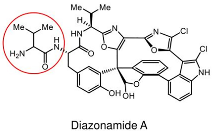 buyuk sir kanser tedavisindeki gizemli molekul 2 - Büyük Sır : Kanser Tedavisindeki Gizemli Molekül