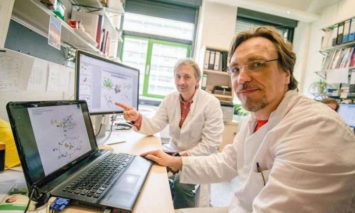 enzimler nasil hidrojen uretir - Enzimler Nasıl Hidrojen Üretir