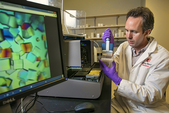 Araştırmacılar Kanserle İlişkili Kilit Bir Enzim Yapısını Belirlediler