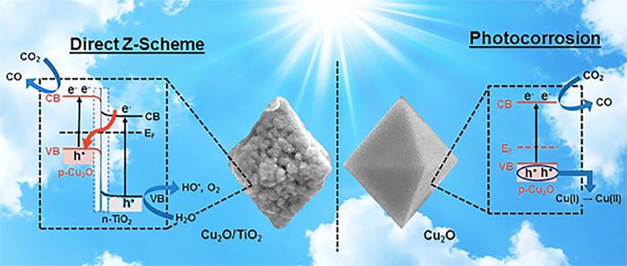 İngiltere Kimya Araştırmacıları, Fotosentez Z Düzenini Taklit Eden Katalizör Geliştiriyorlar
