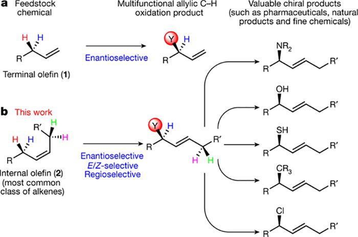 kimyacilar ilac arastirmalarini hizlandiracak kimyasal reaksiyonun haberini verdiler - Kimyacılar İlaç Araştırmalarını Hızlandıracak Kimyasal Reaksiyonun Haberini Verdiler