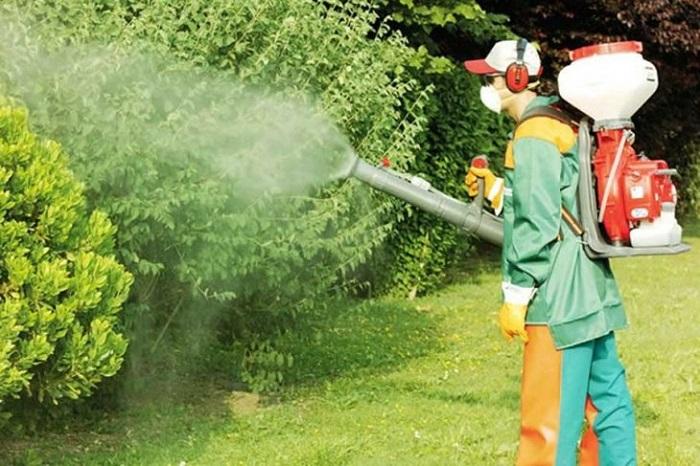 Pestisitler Uzun Süre Maruz Kalanlarda Kansere Neden Oluyor