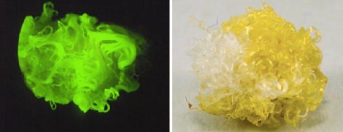 Bilim İnsanları, Karanlıkta Parlayan Bitki Ürettiler