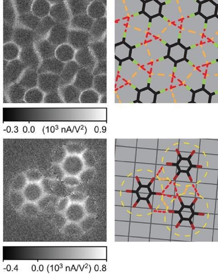 Halojen Bağları, Molekülleri Rüzgar Gülü Şeklinde Birleştiriyor