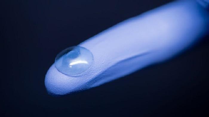 Böcek Kanatları Antibakteriyel Kaplamalara İlham Veriyor
