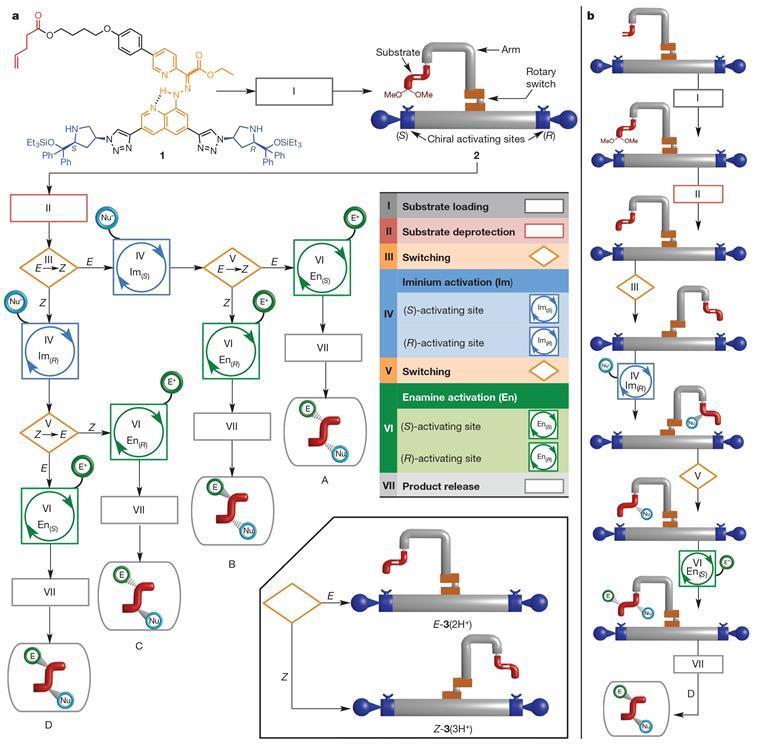 tek bir molekuler makine dort kiral urun uretiyor - Tek Bir Moleküler Makine Dört Kiral Ürün Üretiyor