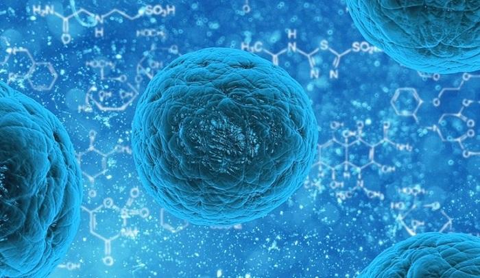 Termodinamiğin Mikroskopik Kökeni